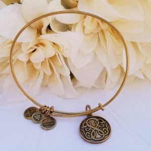 Alex and ani energy bracelet charm bronze one size